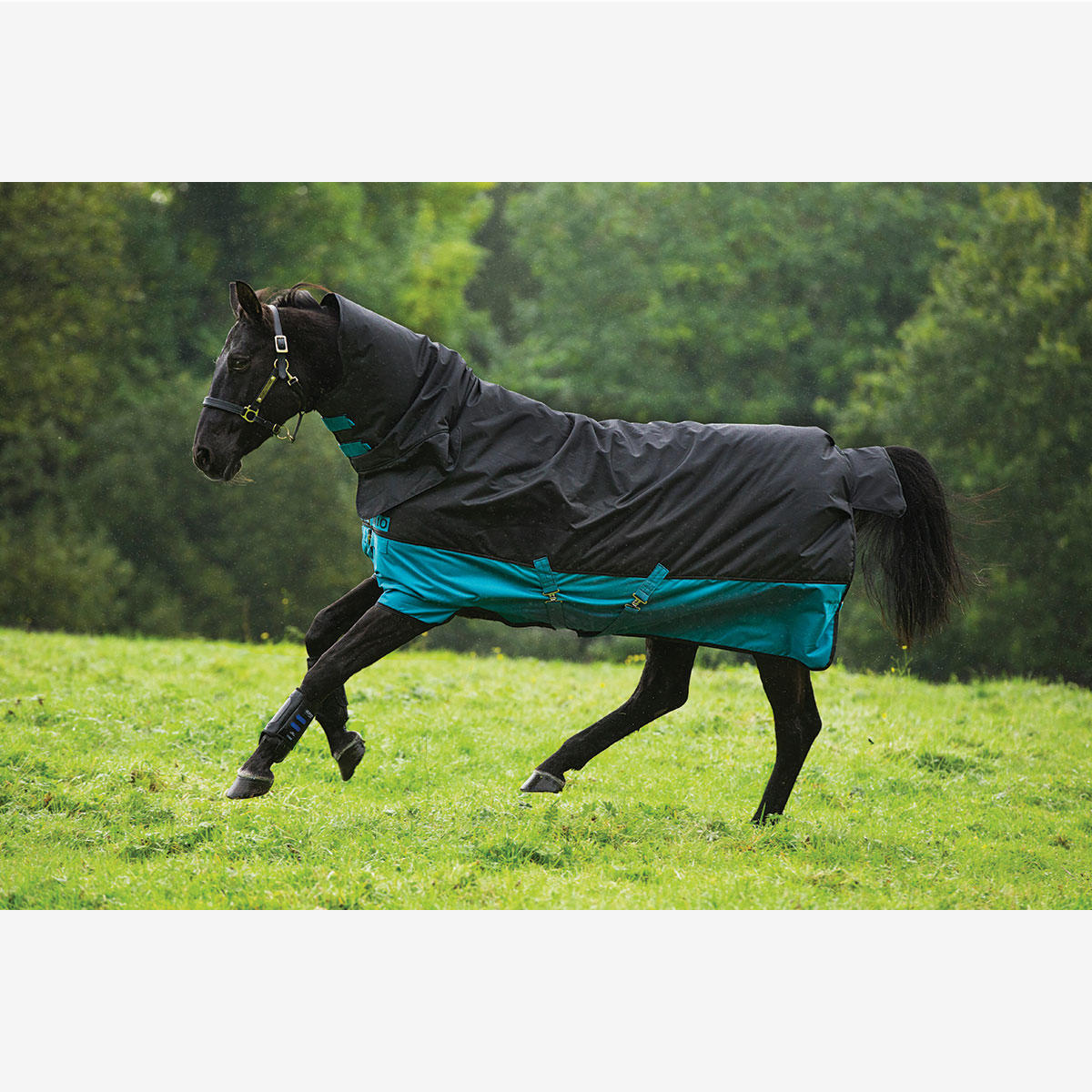 horseware mio 1 st ck 200g selbst gebunden horze. Black Bedroom Furniture Sets. Home Design Ideas